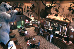 Bear's View of the Saloon